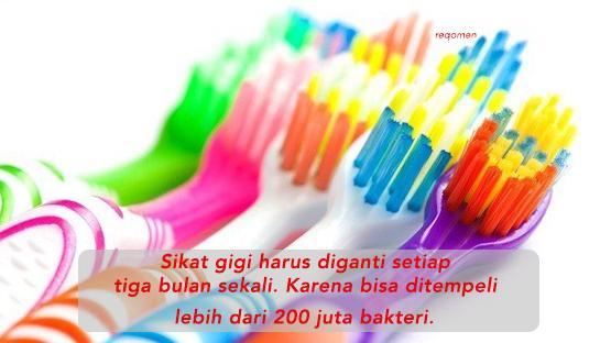 Memang idealnya mengganti sikat gigi tergantung dari jenis sikat yang digunakan. Kalau sikatnya cepet jigrak, maka gantilah sebulan sekali.